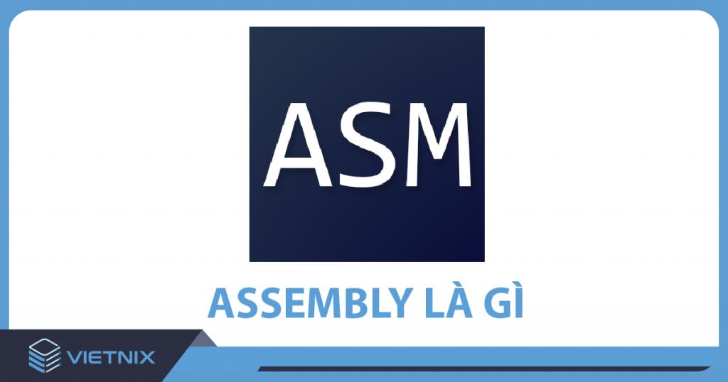 Assembly Là Gì