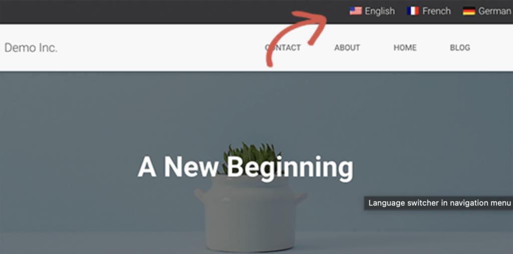 Plug-in-TransPress-da-ngon-ngu-cho-WordPress