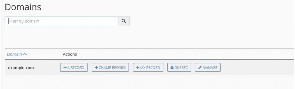 Tìm DNS Record trong cPanel