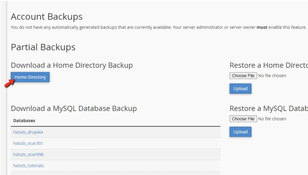 Home Directory Backup