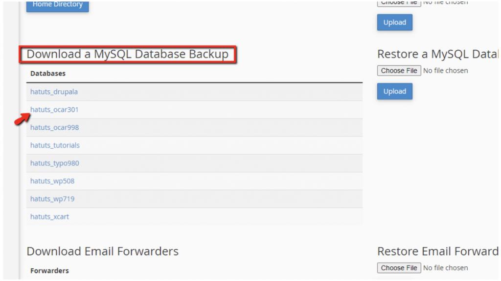 Database backup trong cPanel