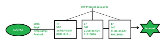 RTP data units
